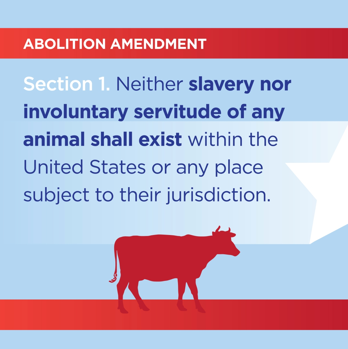 Abolition Amendment - image by Chris Censullo