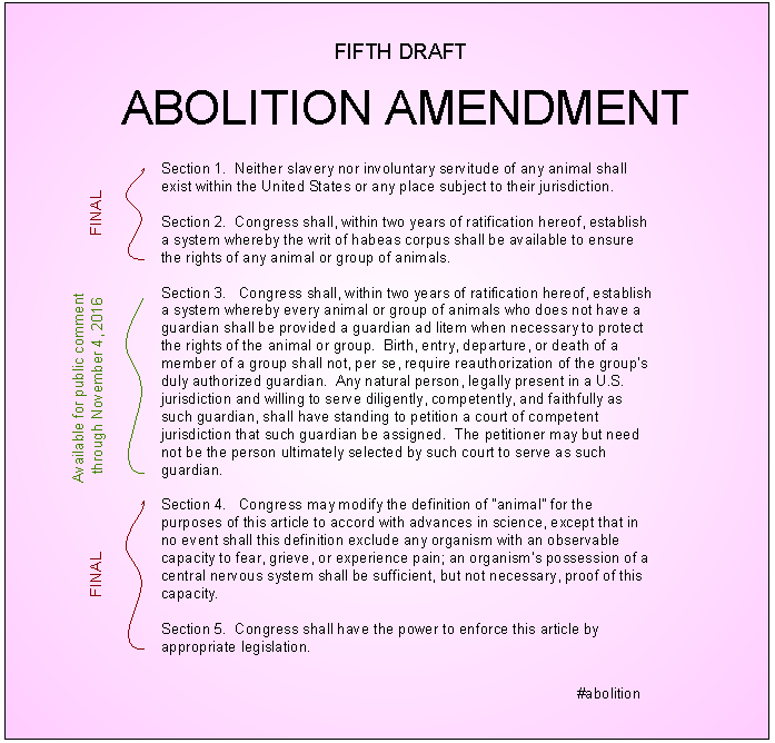 Abolition Amendment | Draft 5