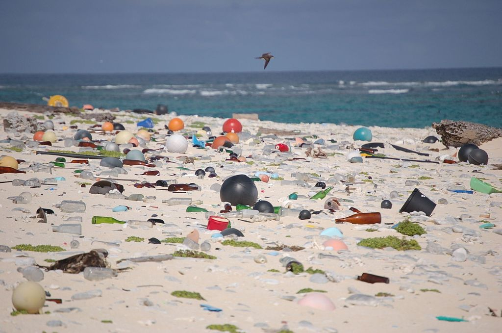 beach_strewn_with_plastic_debris_8080500982