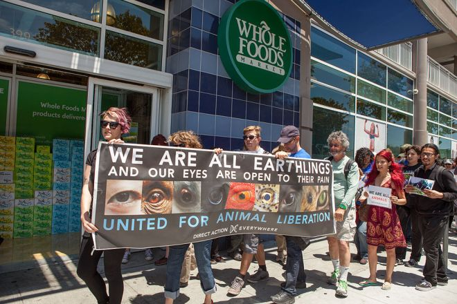 Direct_Action_Everywhere_protest_at_Whole_Foods_Market