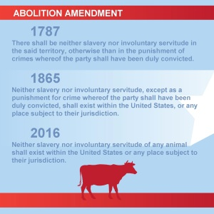 Abolition Amendment_shell